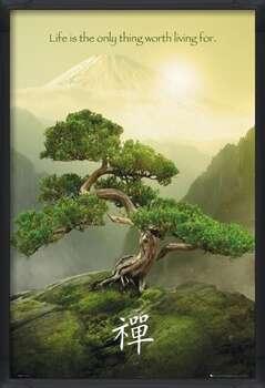 Poster encadré Zen