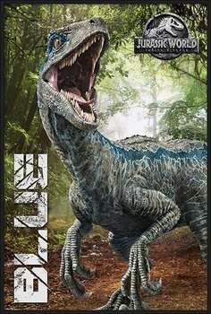 Poster encadré Jurassic World Fallen Kingdom - Blue