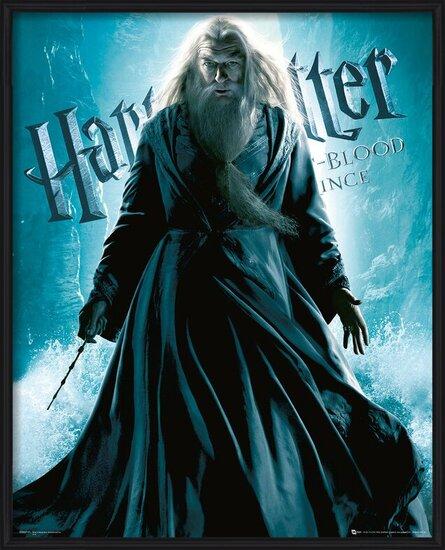 Harry Potter et le Prince de sang-mêlé - Albus Dumbledore Standing Reproduction d'art