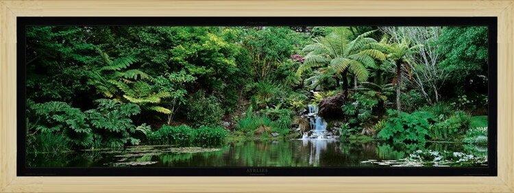 Jardin d'Ayrlies - Auckland - New Zeland Reproduction d'art