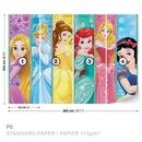 Princesses Disney Aurora Belle Ariel
